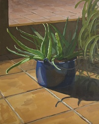 Plants are Amazing #1 - Oil